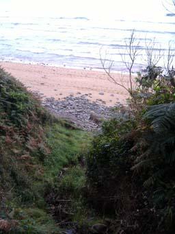 Playaasturiana
