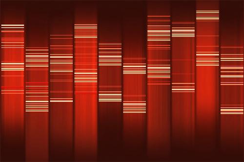 ADN de Un canario en Madrid.